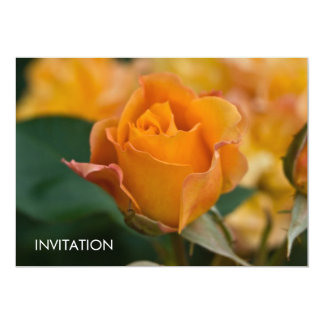 """DSC3450 color de rosa anaranjado Invitación 5"""" X 7"""""""