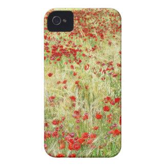 _DSC4475.jpg iPhone 4 Case