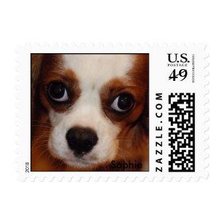 DSC_0025, Sophie Postage Stamp