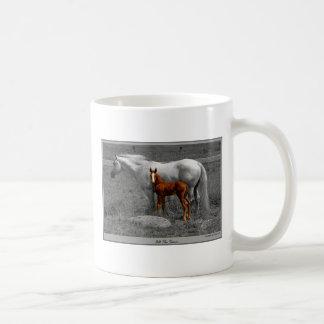DSC_0040mixBWifp3 Coffee Mug