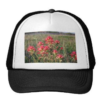 DSC_0079 TRUCKER HAT