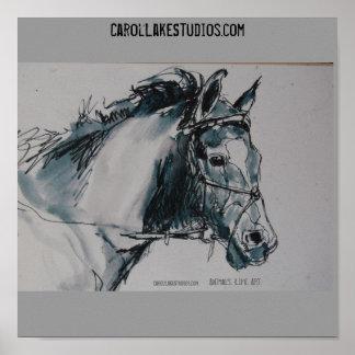 DSC_0462 animales Vida Arte CarolLakeStudio… Poster