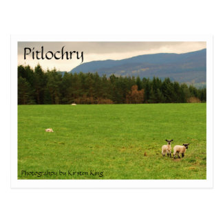 DSC_0522 Pitlochry Photograhpy by Kirsten King Postcard
