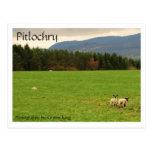 DSC_0522, Pitlochry, Photograhpy del rey de Kirste Tarjetas Postales