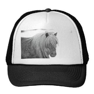 DSC_0551 TRUCKER HAT