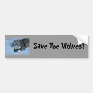DSC_2225, Save The Wolves! Car Bumper Sticker