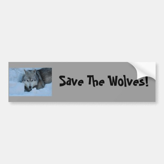 DSC_2225, Save The Wolves! Bumper Sticker
