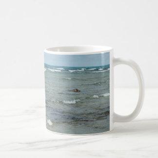DSC_2506 Eagles Solstice Beach Coffee Mugs