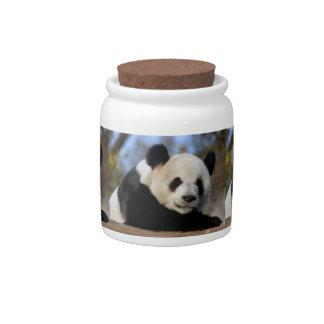 DSC_8884e12x9 Candy Jar