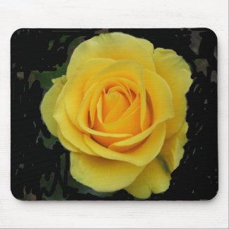 DSCF0127 Golden Rose Mouse Pad