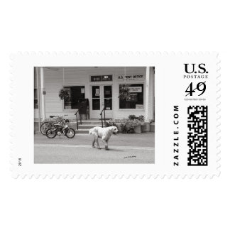 Dscf0294 Minton TN copy Stamp