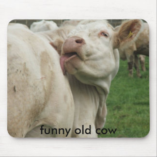 DSCF0612, funny old cow Mouse Pad