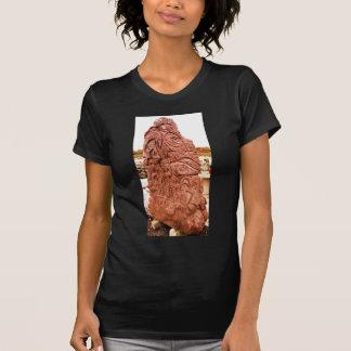 DSCN0167 T-Shirt
