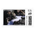 DSCN0277, Photography, Chris O'Brien Stamp