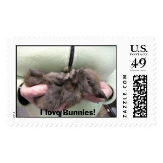 DSCN0356, I love Bunnies! Postage Stamp