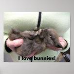 DSCN0356, I love bunnies! Print