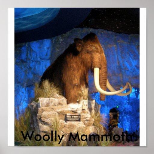 DSCN0436, Woolly Mammoth Poster