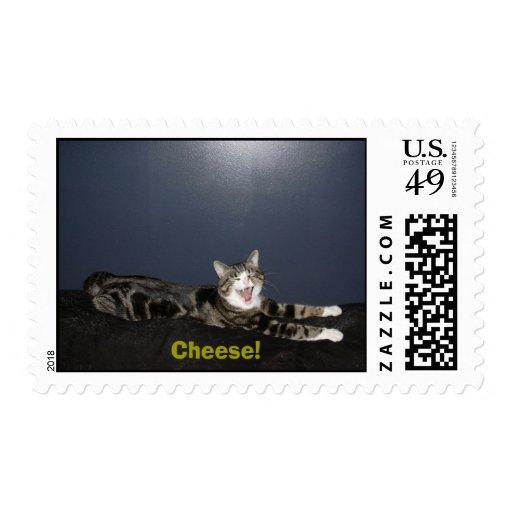 ¡DSCN0447, queso! Estampilla