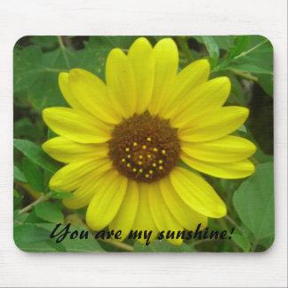 ¡DSCN0537, usted es mi sol! , Usted es mis soles… Mouse Pads