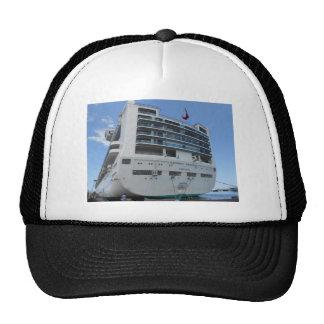 DSCN0871.JPG Sapphire Princess Cruise Ship Trucker Hat