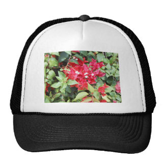 DSCN0885.JPG Red Flowers Trucker Hat