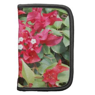 DSCN0885.JPG Red Flowers Planner