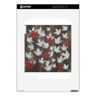DSCN1544.JPG SKIN FOR THE iPad 2