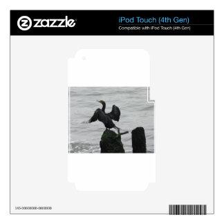 DSCN6580.JPG iPod TOUCH 4G DECALS