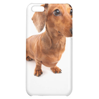 DT# 22789108Solo Spunky Smooth Doxie T-shirts Cover For iPhone 5C