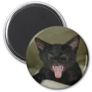 Dubai Kitten-Sticking out his tongue 2 Inch Round Magnet