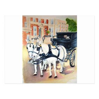 Dublin Carriage ride through St Stephens Green Postcard