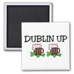 Dublín encima del día del St Patricks Imán