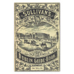 Dublin Guide Book Tissue Paper