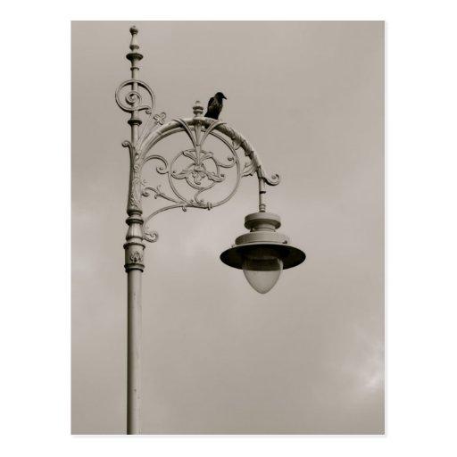 Dublin Lamp Postcard
