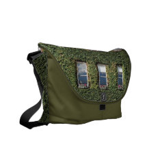 Dublin Town House Windows And Ivy Messenger Bag at Zazzle
