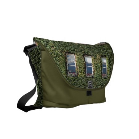 Dublin Town House Windows And Ivy Messenger Bag