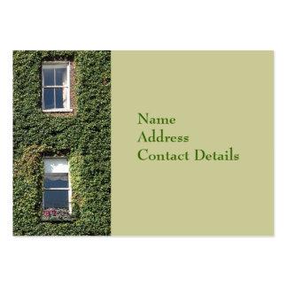 Dublin Town House Windows Climbing Ivy Bookmark Business Card Template