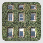 Dublin Town House Windows Climbing Ivy Gift Tag at Zazzle