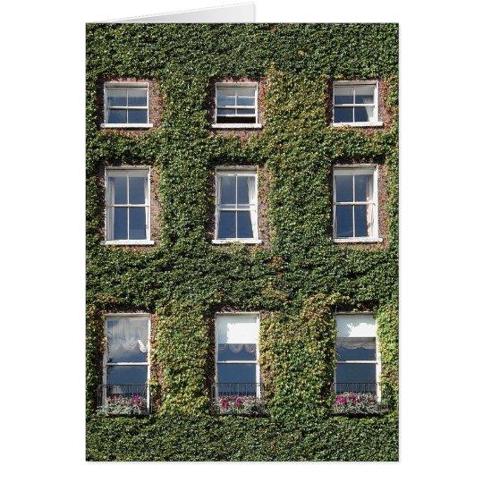 Dublin Town House Windows Climbing Ivy Greetings Card