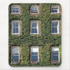 Dublin Town House Windows Climbing Ivy Mouse Mat at Zazzle