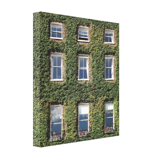 Dublin Town House Windows & Ivy Canvas Print