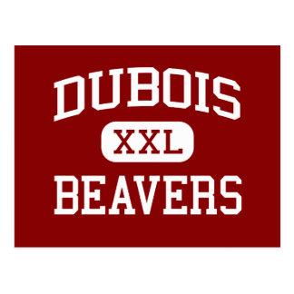 DuBois - Beavers - Area - DuBois Pennsylvania Postcard