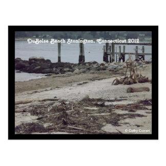DuBoise Beach Stonington Ct After Hurricane Sandy Postcard