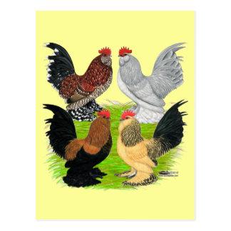 D'Uccles cuatro gallos Postales