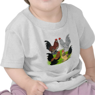 D'Uccles Four Roosters Shirt