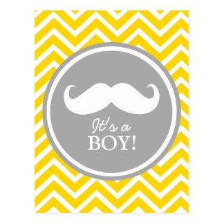 Ducha del bebé del galón del bigote postal