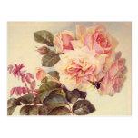 Ducha nupcial de los rosas del vintage postal