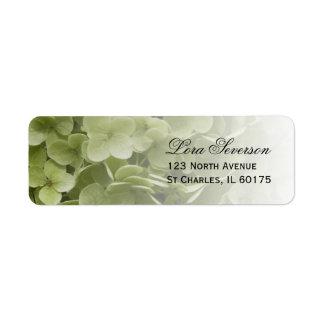 Ducha nupcial floral del Hydrangea verde de Etiqueta De Remitente