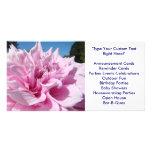 Duchas grandes de la flor de la dalia de la INVITA Tarjetas Fotograficas