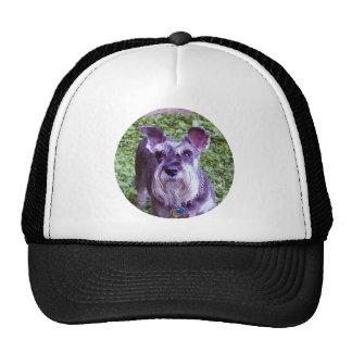 Duchess Trucker Hats